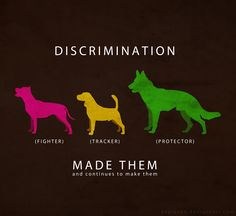 breed specific discrimination Like it does at many area events, bama bully rescue will have a booth at saturday's 7th annual magnolia festival pooch parade in gardendale but unlike many area events, don't look for any pit bulls to be accompanying the rescue volunteers gardendale has a breed specific ordinance that bans pit.