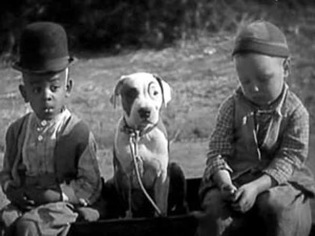 2-little-kids-with-their-pit-bull