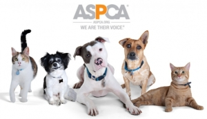 aspca-group-1024x592