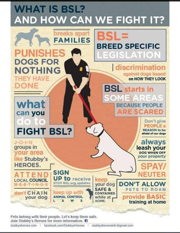 whyat-is-bsl-and-how-can-we-fight-it