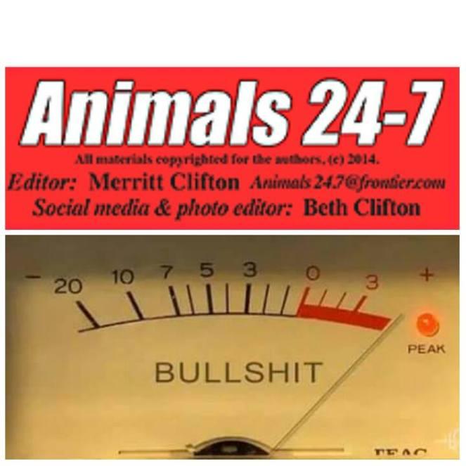 a 24 7 bullshit